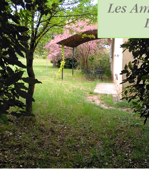 rental gite ardeche vallon pont d'arc